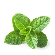 peppermint what is a good detox tea