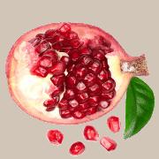 what's a good detox tea pomegranate
